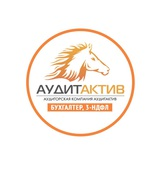 Бухгалтерия АудитАктив, фото №1